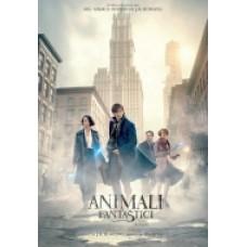 ANIMALI FANTASTICI E DOVE TROVARLI |dvd|