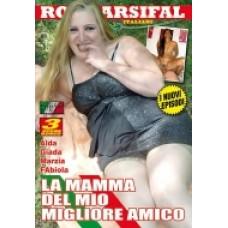 LA MAMMA DEL MIO MIGLIORE AMICO
